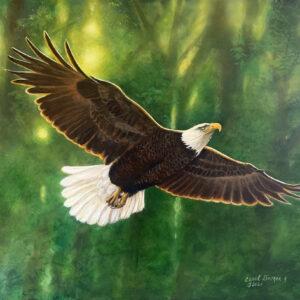 Glorious Flight